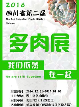 2016第二届四川省多肉展