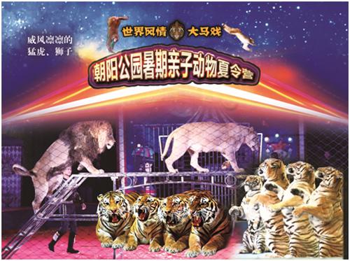 """世界风情大马戏""""朝阳公园暑期亲子动物夏令营"""""""